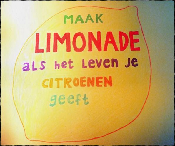 maak limonade citroen