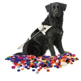hond-doppen